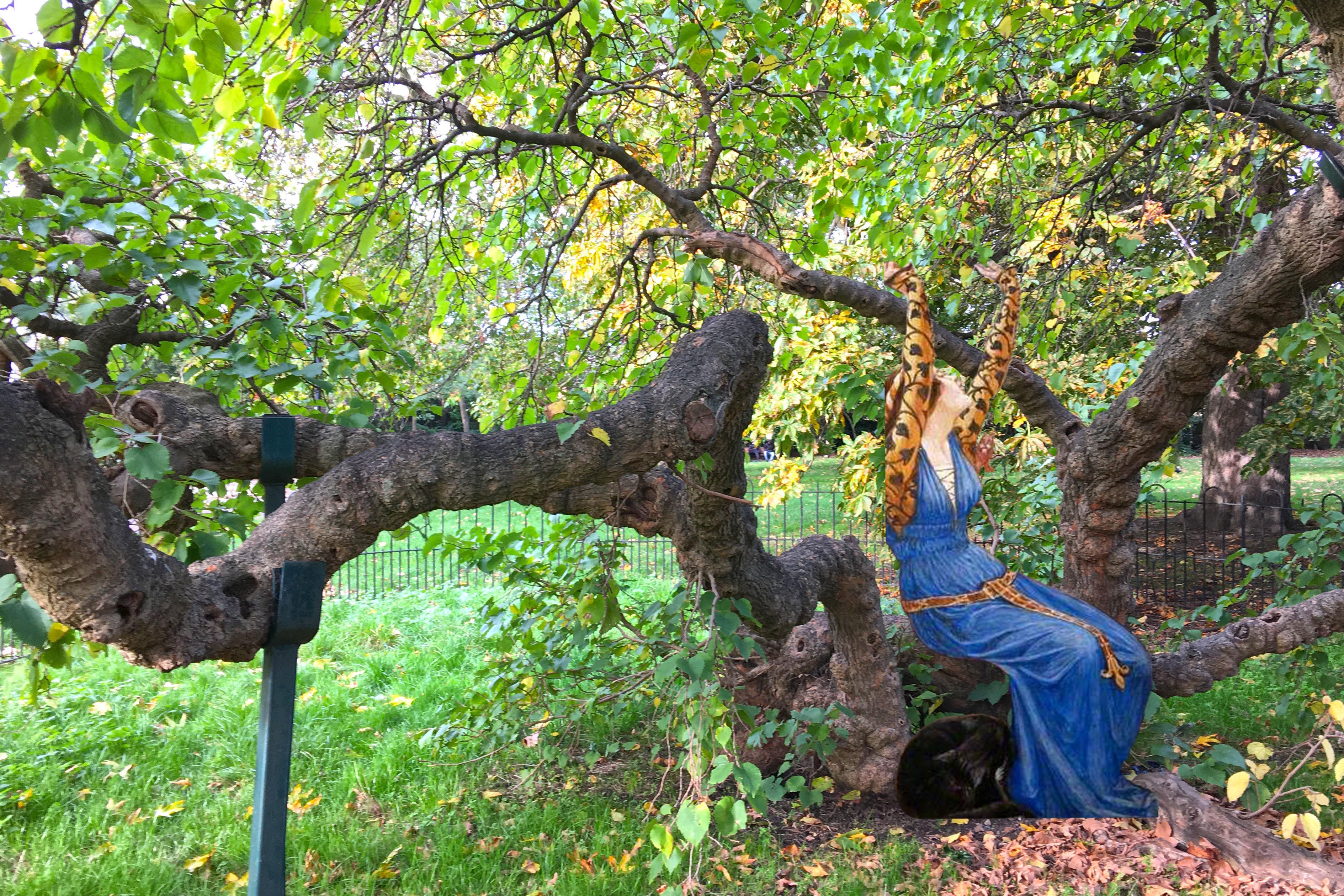 """Photograph of the mulberry tree in Sayes Court Park, Deptford, London, with a figure from the right wing of Walter Crane's """"The Briar Rose"""" (1905) triptych sitting on a branch."""